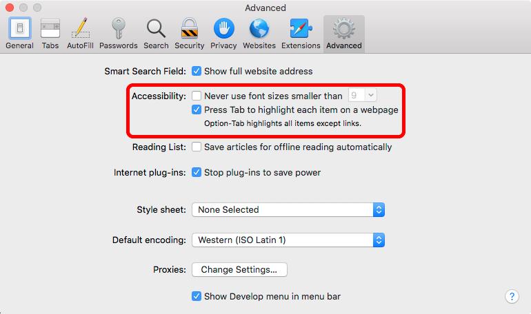 The advanced accessibility setting checkbox option in Safari